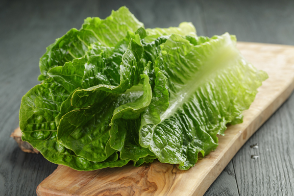 The California Leafy Greens Marketing Agreement is appointing a special new subcommittee to investigate the role land adjacent to leafy greens farms plays in contributing to foodborne illness outbreaks