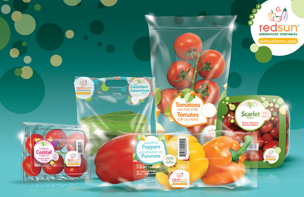 Red Sun Farms is making greenhouse industry waves with its latest sustainable solution, SustainLabel®, made in partnership with Yerecic Label