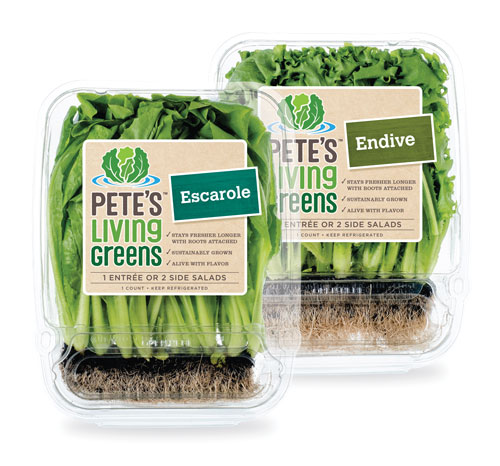 Pete's Living Greens Endive and Escarole Living Strips