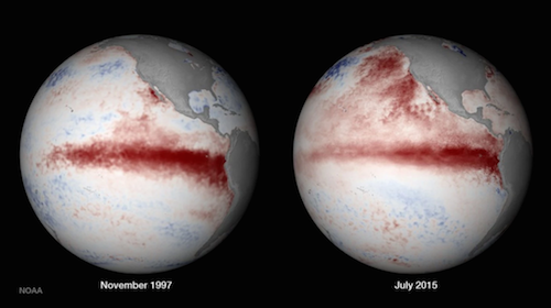 Sea Surface Temperatures from 1997, when rain reached Northern CA, to now.