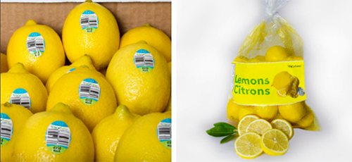 SiCar Farms has announced that its lemons are ready to fill up retail aisles as its Mexican lemon program reached full production in May of this year