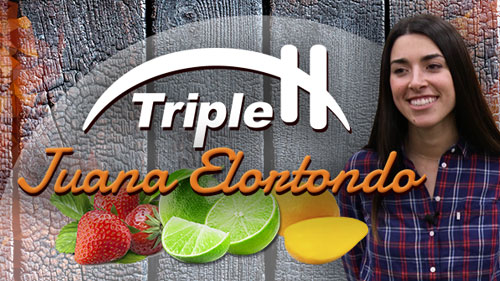 Triple H's Juana Elortondo Talks Becoming One-Stop Shop With New Fruit Division