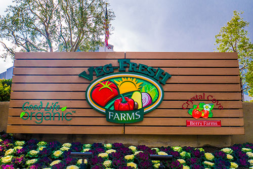 Veg-Fresh Farms announced it was awarded the Safe Quality Foods (SQF) Certification, which highlights its dedication to food safety and quality management