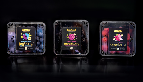 Berryworld Berries, which are better-tasting everyday berries, and WOW Berries, which are exceptional varieties, are two of SUNSET's berry offerings